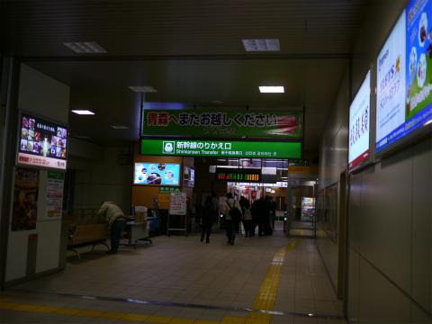P1110173.jpg