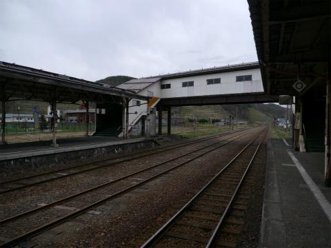P1140149.jpg