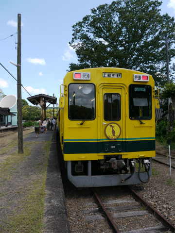 P1190859.jpg