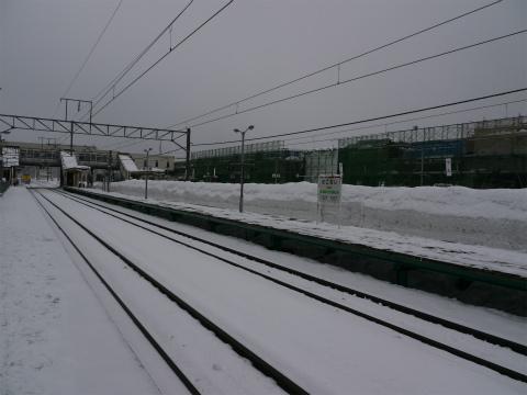 P1280030.jpg
