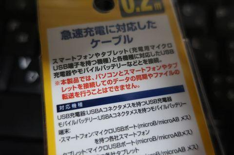 IMG_1600_R.JPG