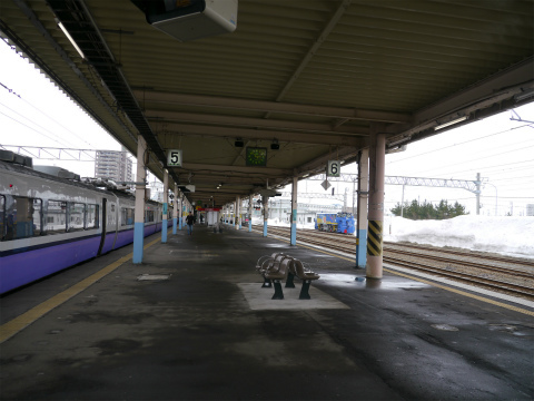 P1120102.jpg