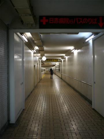 P1160514.jpg